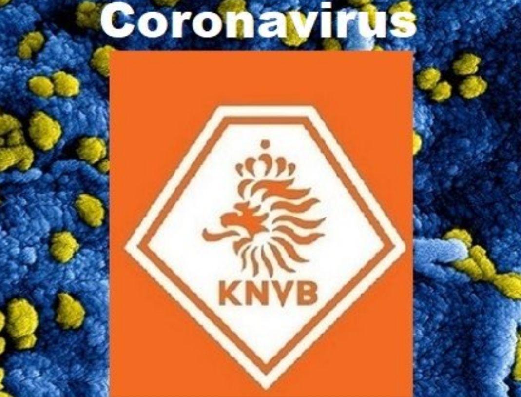 Update 1 juli: Het Corona virus en De Merino's
